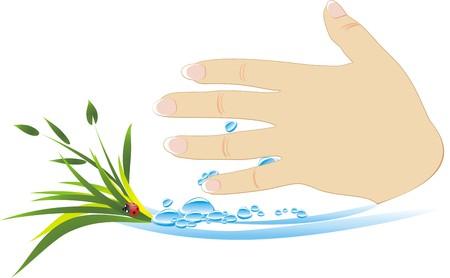 prophylaxe: Female Hand mit Pflanzen und Tropfen Wasser. Abstrakte Komposition. Vektor