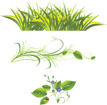 sprig: Sprig with flowers, grass and ladybird. Three isolated compositions.