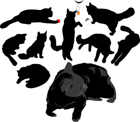 Catlike silhouettes.  Vector