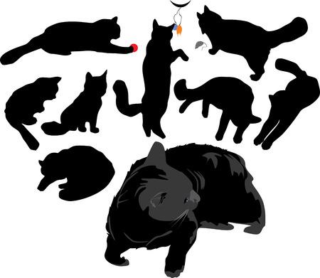 catlike: Catlike silhouettes.