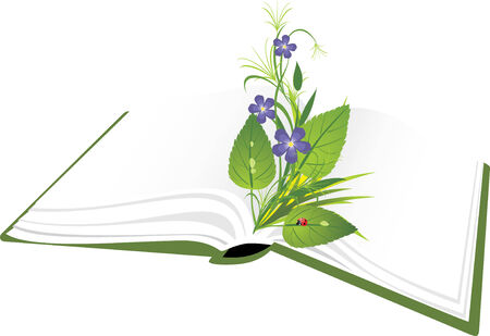 Book and bouquet of flowers with ladybird.  Vector