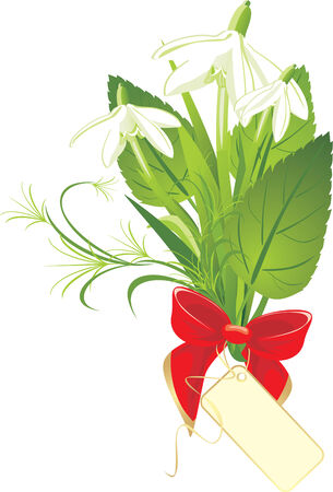 Bouquet of snowdrops with bow and card. Stock Vector - 6541689