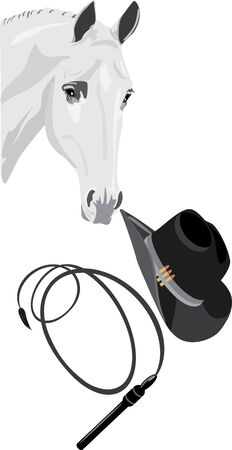 Cowboy hat, whip and horse head Stock Vector - 7345424