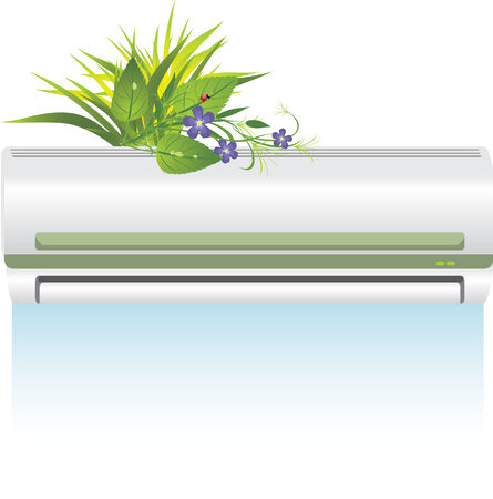 Conditioner and bouquet of flowers Vector