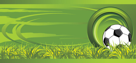 Soccer ball on the meadow. Decorative banner Vector