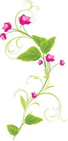 a sprig: Ramita con flores rosas