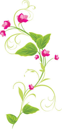 a sprig: Sprig with pink flowers