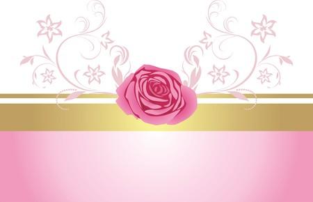 Borde decorativo con Rosa Rosa para dise�o