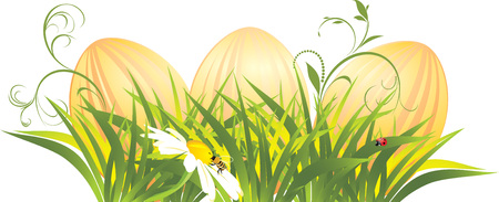 Easter eggs in the grass with chamomile Stock Vector - 8945526