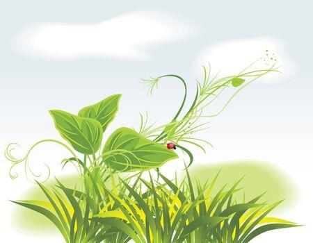 a sprig: Ramita y ladybird entre la hierba