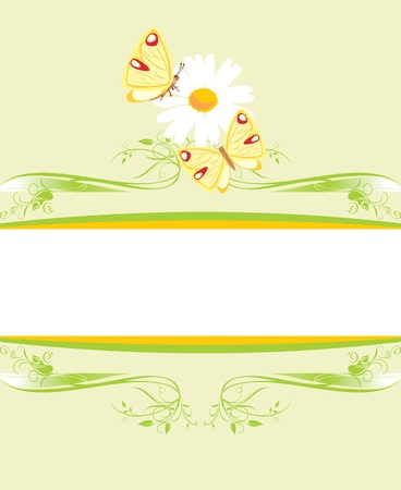 decorative item: Chamomile and butterflies on the decorative frame Illustration