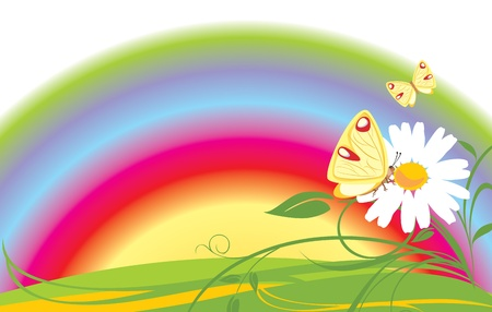 Chamomile and butterflies on the background of rainbow Vector