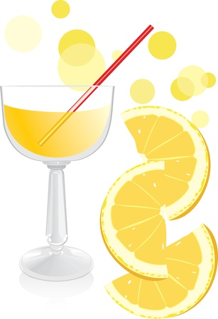 Glass with juice and pieces of orange Stock Vector - 9532833