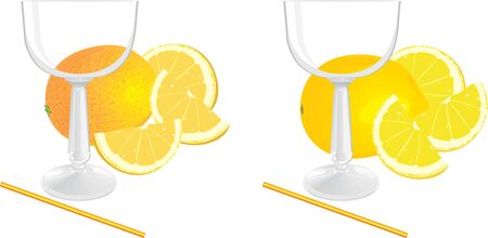 Glasses and pieces of lemon and orange Stock Vector - 9532840