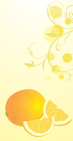 Orange on the floral background Vector