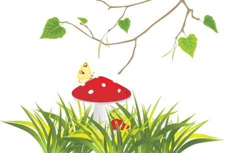 Fly agaric mushrooms in grass and birch sprig Illustration