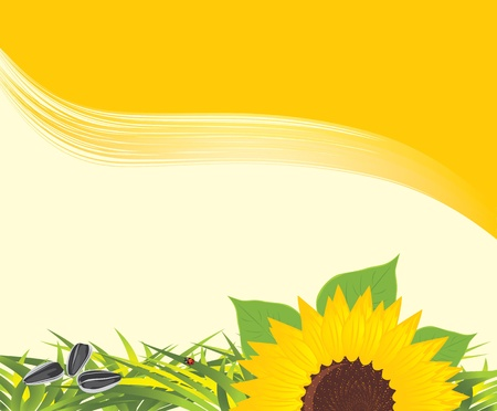 Sunflower with grass and pips on the yellow background Vector