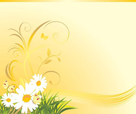 Grass with chamomiles and butterflies on the yellow background