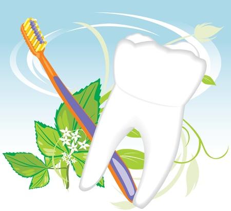 Dente, spazzolino e rametto di menta