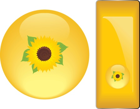 Yellow buttons with sunflower Vector
