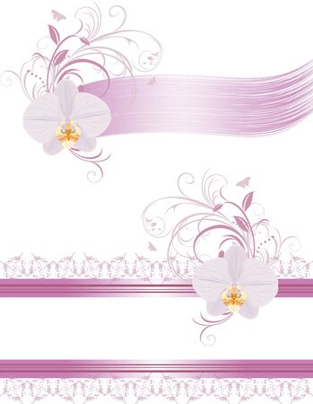 Decorative elements for design with orchids Vector