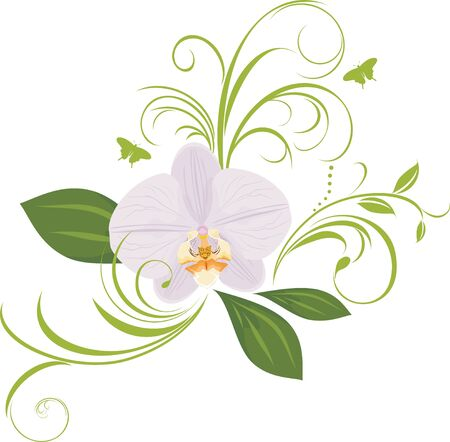 Orchid with decorative sprigs Stock Vector - 9867579