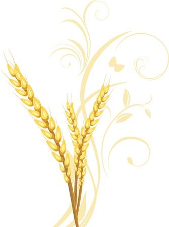 Tres orejas de trigo con adorno floral Vectores