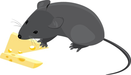 deliciously: Field mouse with pieces of cheese