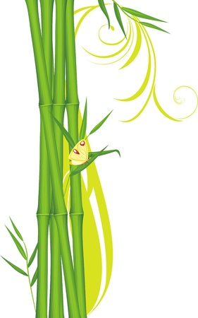 Green bamboo with butterfly Vector