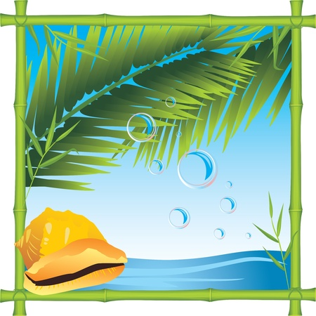 Bamboo frame with shell and palm branches. Seascape Stock Vector - 9999000