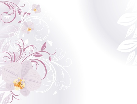 butterfly background: Orchids with decorative sprigs. Background for card Illustration