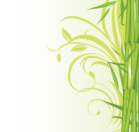 Green bamboo on the floral background