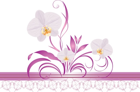 floral objects: Orchids with floral ornament. Decorative border Illustration