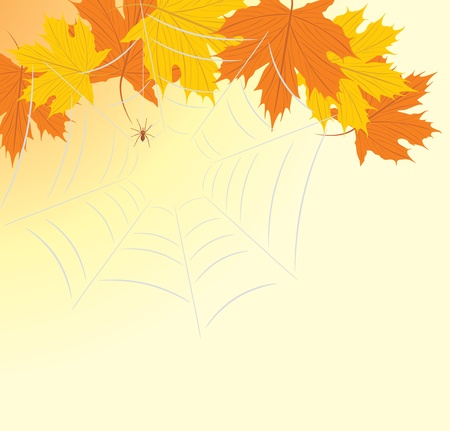 Maple leaves with spiderweb Vector