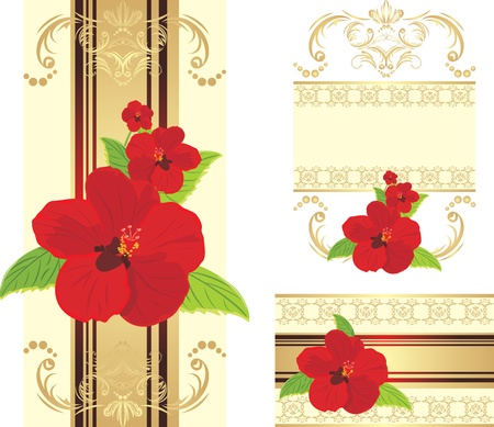 artistic flower: Red flowers on the decorative ribbon with ornament. Set for design