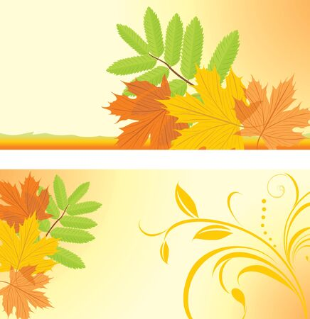 ash: Autumn banners with maple and ash leaves Illustration