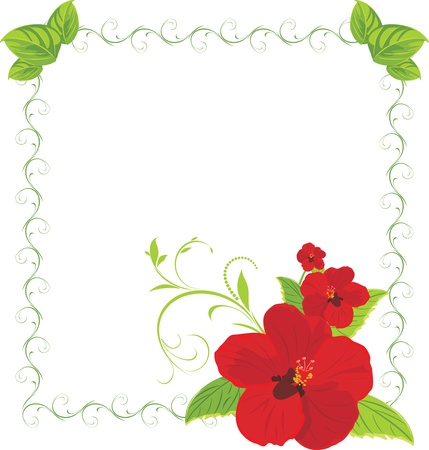 artificial flower: Red flowers in the decorative frame Illustration