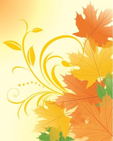 a sprig: El oto�o de hojas de arce con puntilla decorativa Vectores