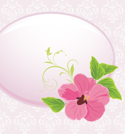 Frame with pink flower on the decorative background Vector