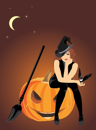 Sitting witch on the halloween pumpkin Vector