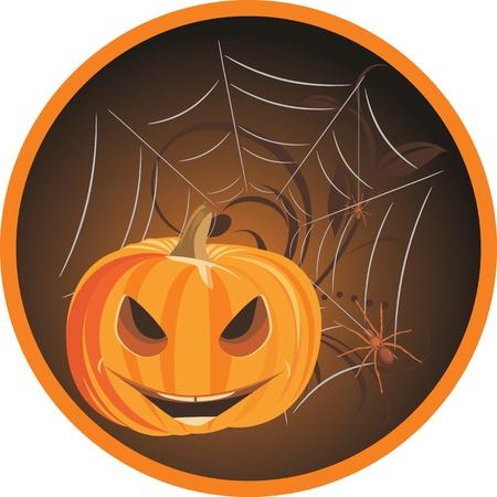 stocky: Halloween pumpkin with spiders