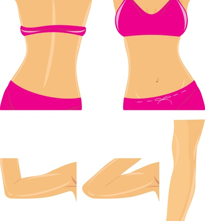Fragment du corps féminin
