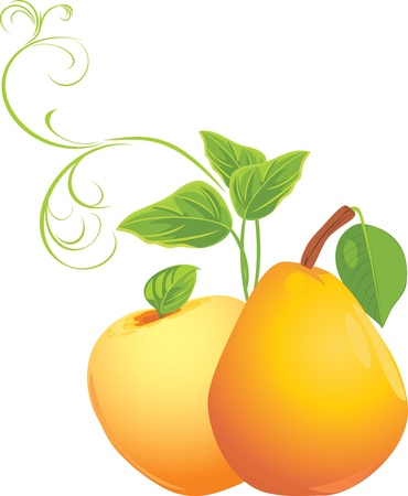 Apple and pear with sprig Stock Vector - 10941841