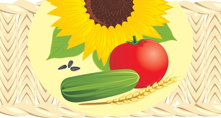 Sunflower with pips, tomato, cucumber and wheat ear on the wattled napkin Stock Vector - 10982502