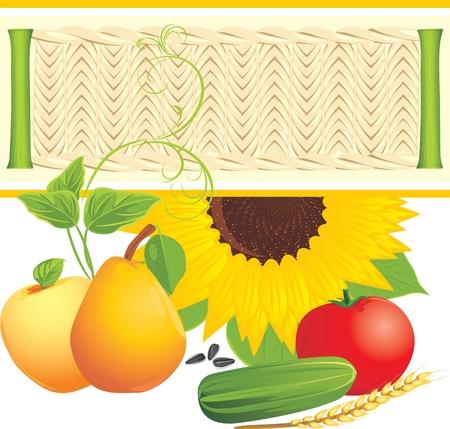 Food ingredients Stock Vector - 10982503