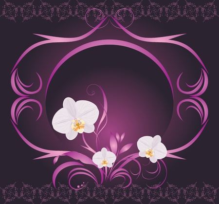 Orchids in the decorative frame Vector