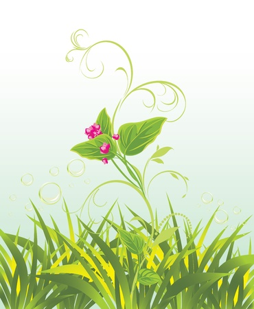 a sprig: Sprig with pink flowers and grass