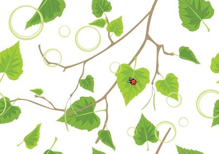 a sprig: Abedul rama. De fondo decorativo de primavera Vectores