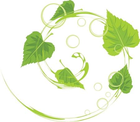 pellucid: Remolino de hojas de abedul y burbujas