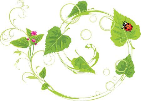 a sprig: Ramita con flores y hojas de abedul. Primavera concepto Vectores